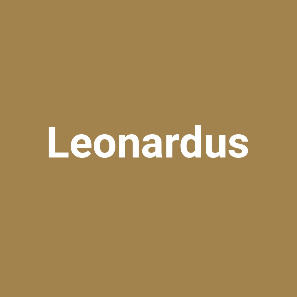 Leonardus Gitaren